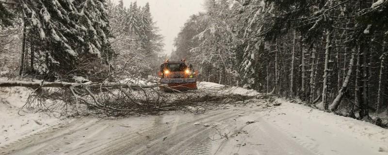 gesperrte Strassen und umgeknickte Bäume wegen starken Schneefällen, © Foto: Straßenbauamt Weilheim