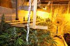 marihuana-2, © LKA