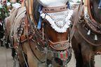 Oktoberfest 2015 - Pferdekutsche, © Oktoberfest 2015 - Pferdekutsche