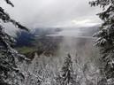 Blick auf see mit Bäumen mit schnee bedeckt