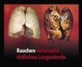 """Bild einer gesunden und einer kranken Lungen mit der Aufschrift: """"Rauchen verursacht tödlichen Lungenkrebs"""", © Europäische Kommission"""
