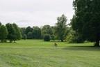 Ein Spanner drapiert Videokameras im Gebüsch des Englischen Gartens