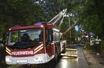 Mit einem Kran musste der Baum in München (Rudorffstrasse) gesichert werden., © Foto der Berufsfeuerwehr München